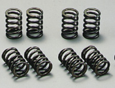 Greddy - Valve Springs