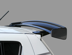 Monster - Carbon GT Wing
