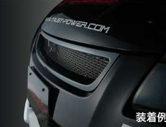 Greddy - Carbon Front Grille