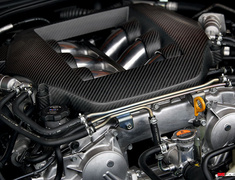 Zele Performance - Dry Carbon Engine Cover