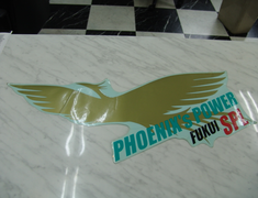 Phoenix Power - Vehicle Body Stickers