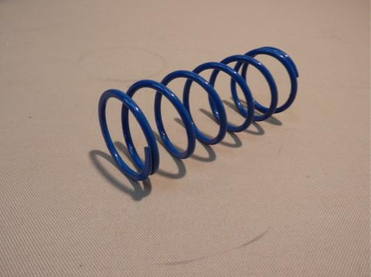 Type R/C Wastegate - Spring - Blue - Boost 107.8-147.0Kpa (1.1-1.5Kg/cm2) - 11900261