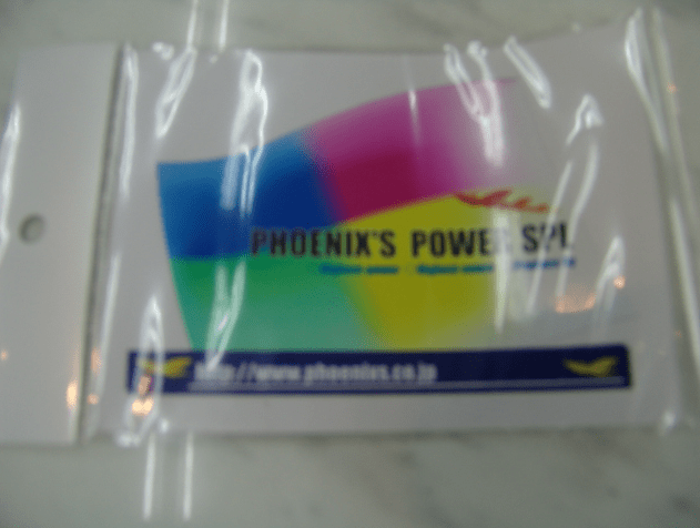 Phoenix Power - Rainbow Flag Sticker