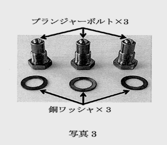 Plunger Bolt Set - Includes 3 bolts - Spare Bolts