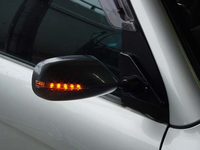 with LED Turn Signals - F2SwLED