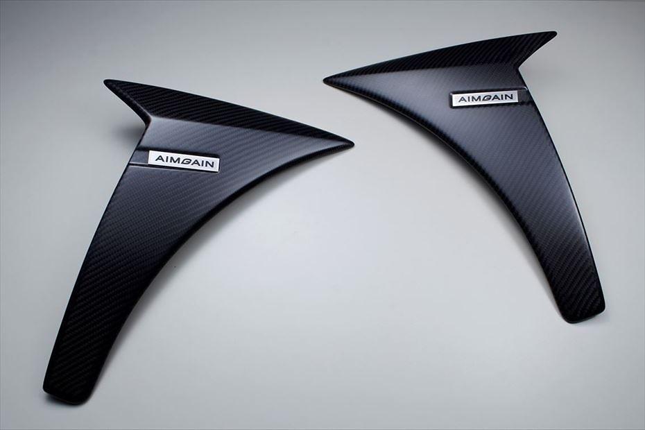 Front Fender Panel - Construction: Carbon - Colour: Matte Clear - AIMVIPEXE-IS-FFPC