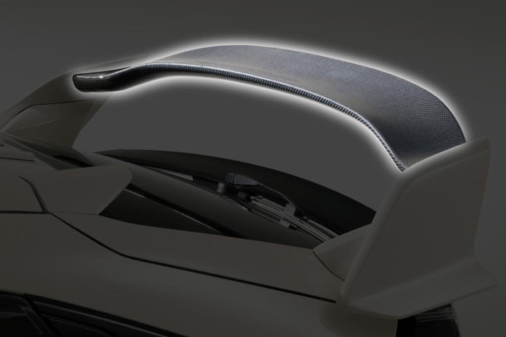 Rear Wing Flap - Construction: Carbon - VAHO015C