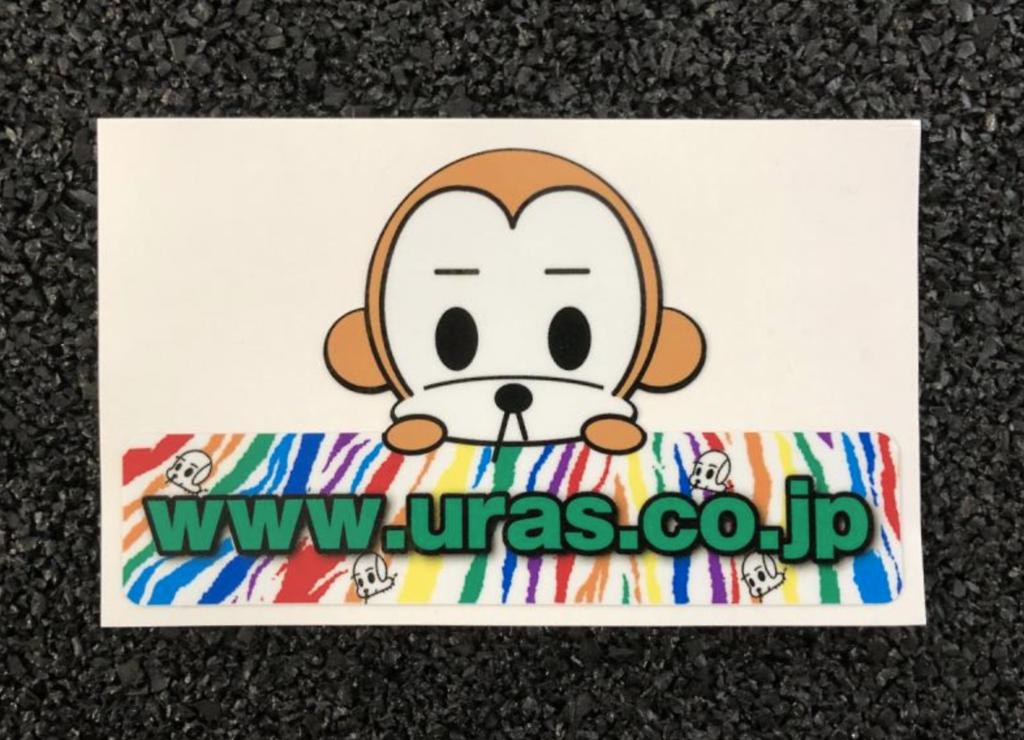 Rainbow sticker zebra pattern - Size: 134 x 79mm - 31511