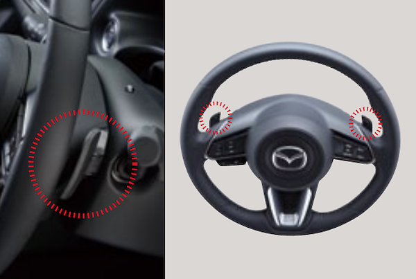 Steering Shift Switch Code - Category: Interior - B62S V7 481