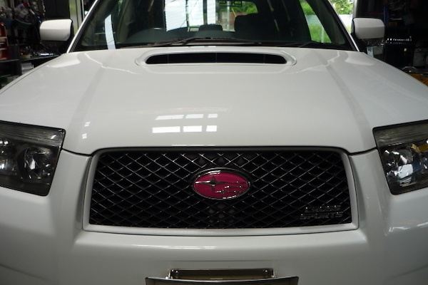 Type: Front - Colour: Pink - EMBLEMSG59F