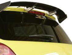 TM Square - 3D Carbon Rear Wing