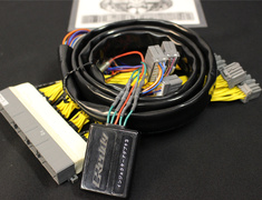 15931501 E-Manage Ultimate Car Type Harness M-5