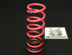 Legacy Touring Wagon - BPE - Rear - 1 Spring - ST2038021020