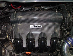 Stout - Carbon Engine Cover