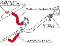 Monster - Radiator Hoses