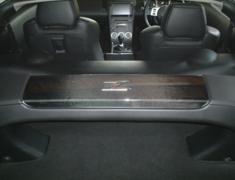 Rear Strut Cover Panel for Z33 Zenki