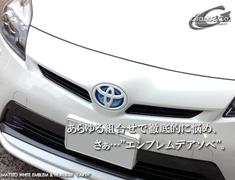 Grazio Prius Emblems