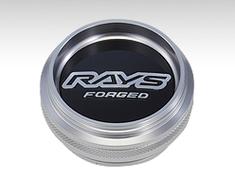RAYS Logo High Type