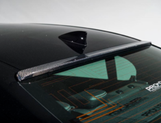 GS 300 - ARL10 - Construction: Carbon - Roof Spoiler