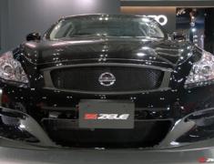 Skyline - V36 - Construction: FRP - Colour: Unpainted - GT Front Grille