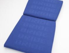 - Type: Backrest - Zeta III, Exas III, Artis III, Vios III, Zieg III, Vios III REIMS, Stradia II REIMS - Color: Blue Logo - P01JCO