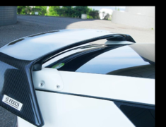CR-Z - ZF1 - Rear Wing - Construction: Carbon/Carbon (Twill) Pedestals - FEELS-APZF-RWCP