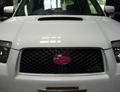 Forester - SG5 - Type: Front - Colour: Pink - EMBLEMSG59F