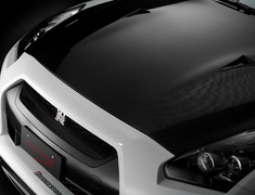 GT-R - R35 - Material: Carbon Fiber - MINES-GTR-CG