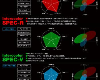Trust Greddy - Intercooler Kit - Spec LS