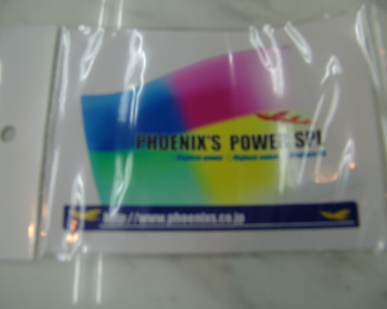 Phoenix Power - Rainbow Flag Sticker