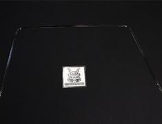 Rear Window Moulding Fastener - Category: Exterior - 79780-04U15