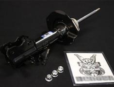 Front Strut Kit RH - E4302-EN025